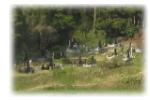 集落墓地・部落墓地・村落共同墓地